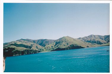 picton travel and talk photograph,travel and talk new zealand,travel writing,travel picton, matt thomas travel writing,travel new zealand,north to south island ferry