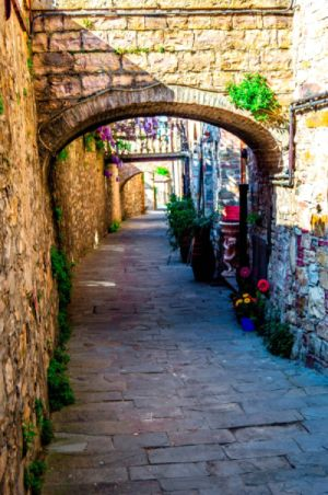 san donato photograpy,tuscany photograph