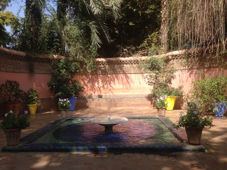 travel and talk marrakech photograph,travel morocco,travel writing ben miller,jardin majorelle photograph,marrakech photograph